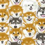 Protected: YK−76070-2 KOKKA SHIBAINU dog Japanese fabric